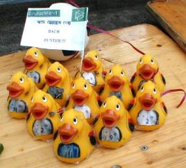 enten_schoen7.JPG (16068 Byte)